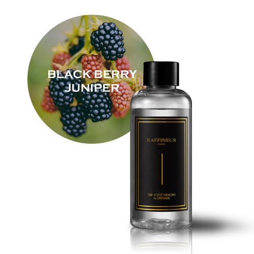 [Raffineur]Basic Diffuser Black Edition Refill (Black berry Juniper/100ml)