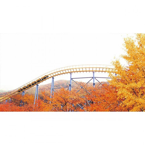 [Seoul Pass] Seoul Land One day pass